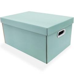 Caixa Organizadora Retangular 46x32x23cm Acqua Verde - Boxgraphia