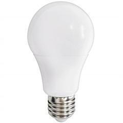 Lâmpada Led Bulbo 9w Bivolt 6500k Luz Branca - Casanova