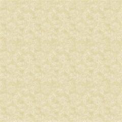 Papel de Parede 170104 Vinil Samba Bege 53cm com 10 Metros  - Finottato