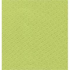 Papel de Parede Samba 710507 - 53cmx10m - Finottato