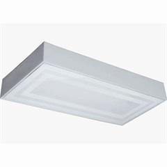 Plafon para 2 Lâmpadas Valencia Transparente Ratangular - Tualux
