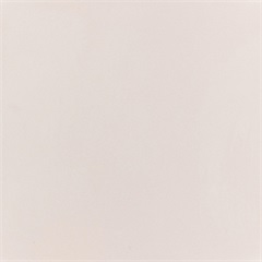 Porcelanato Alto Brilho Bianco Polido 62x62cm  - Elizabeth