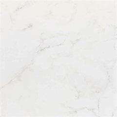 Porcelanato Carrara Clássico Brilhante Retificado 52x52cm  - Porto Ferreira