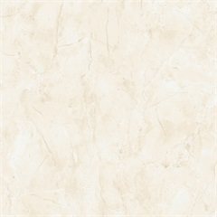 Porcelanato para Pisos E Paredes Marmo Bianco Bold Acetinado  52x52 Cm - Biancogres