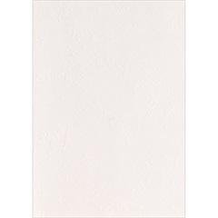 Revestimento Navona Real Liso Brilhante Branco 32x50cm - Unigres