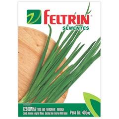 Sementes de Cebolinha Todo Ano Ever Green Nebuka - Feltrin