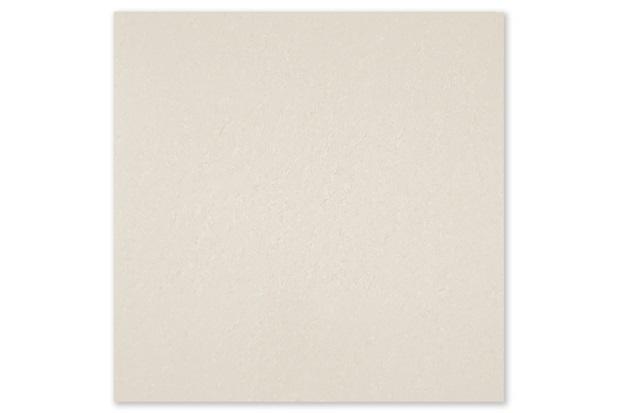 Resultado de imagem para porcelanato bianco delicato polido portinari