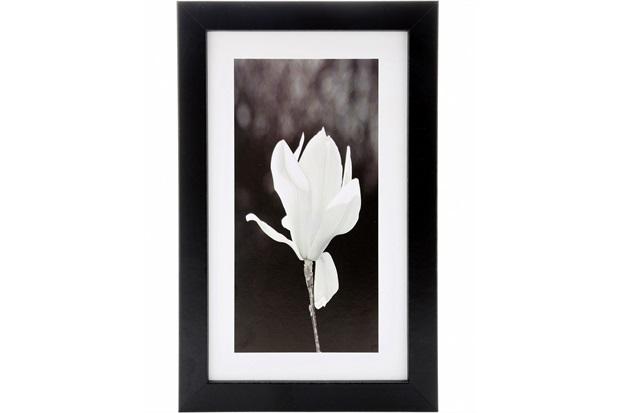 Quadro Orquídea Preto E Branco19 X 29 Cm - Euro