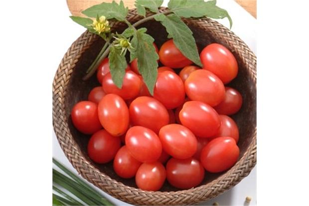 Sementes de Tomate Cereja Carolina Vermelho - Feltrin